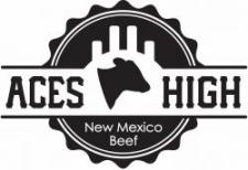 Image of ACES High logo
